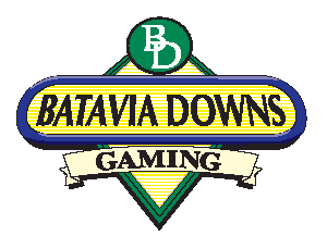 BatDownsGaming_Color_Small